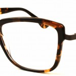 Tortoise Chic - style 6200 - Blue Magic Eye